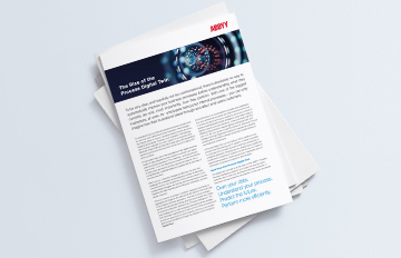 The Rise of the Process Digital Twin - ABBYY Brochure